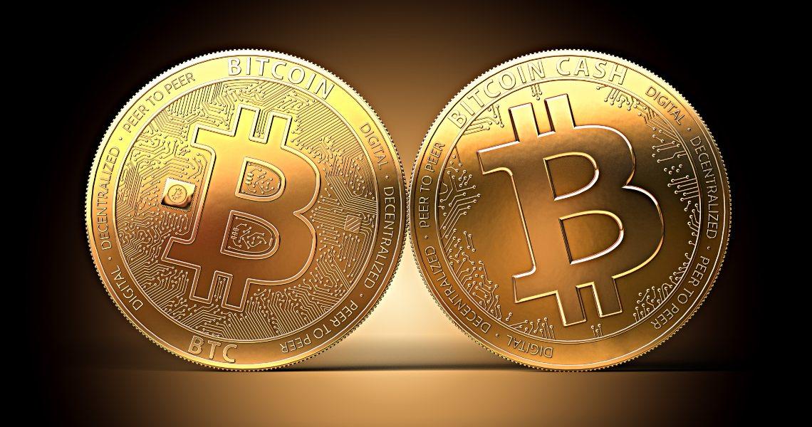 Roger Ver: perché Bitcoin Cash è meglio di Bitcoin