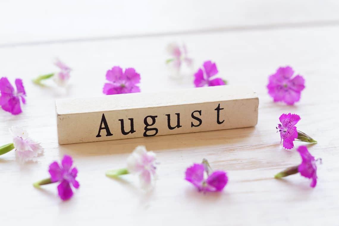Agosto, il mese dell'Altcoin season