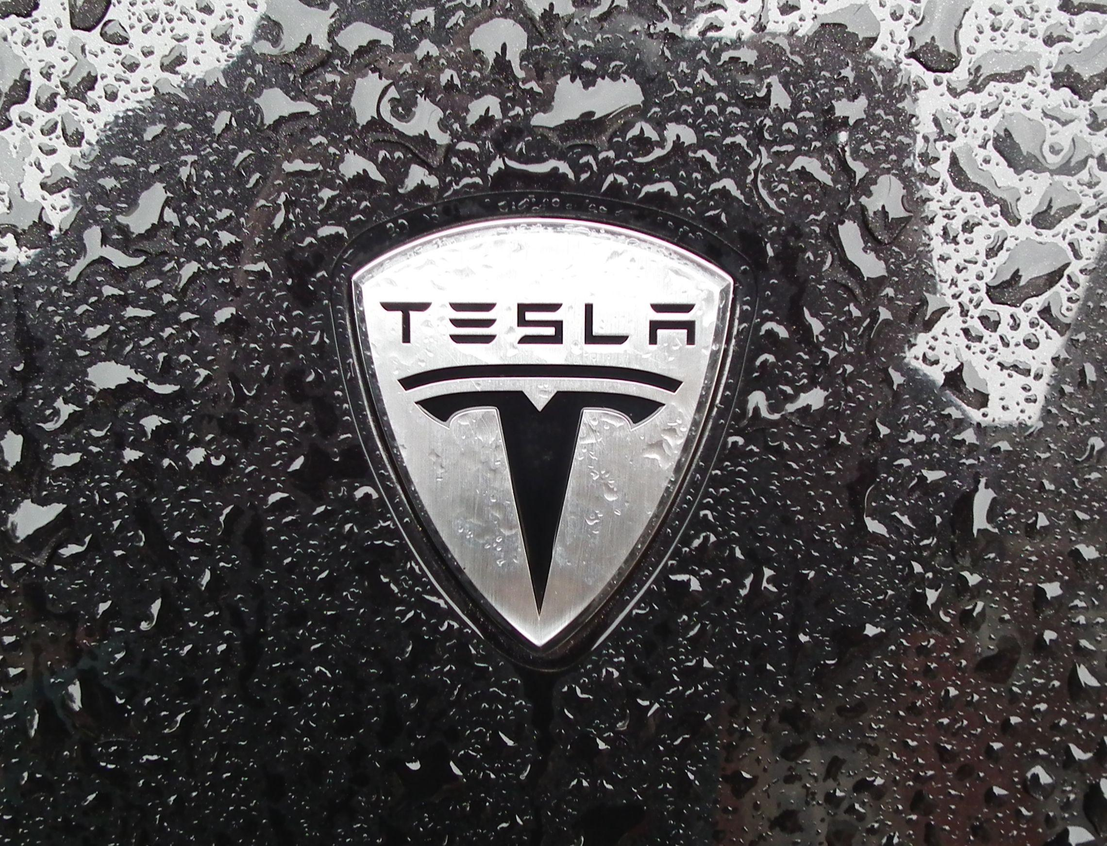 Le azioni di Tesla vanno su Algorand
