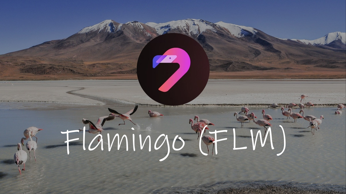 Flamingo Finance, una bolla cross-chain ?