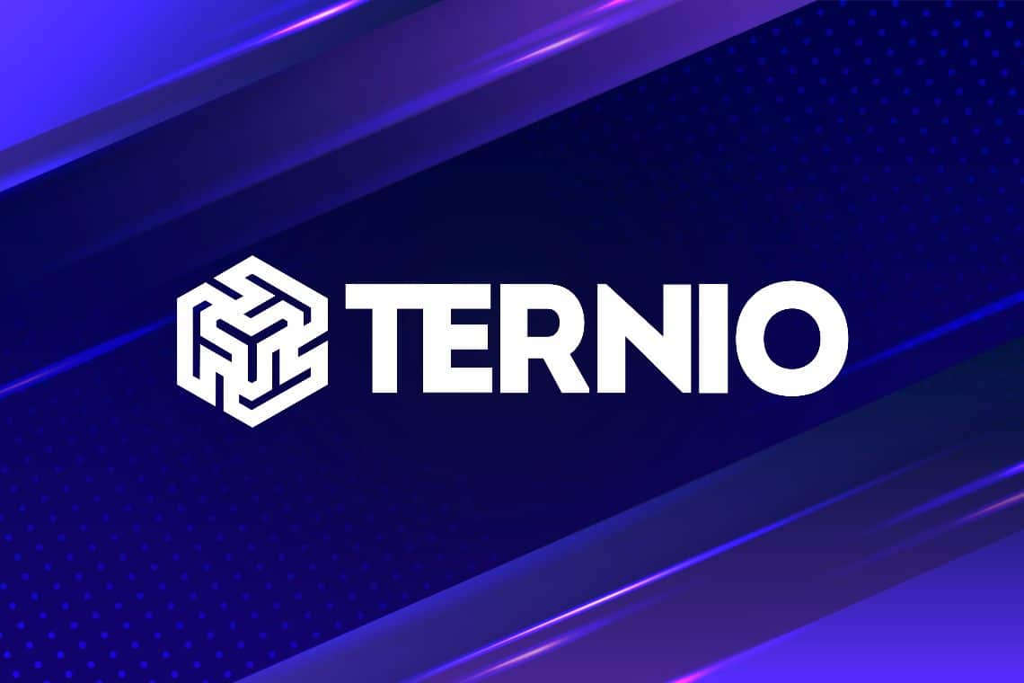 Ternio stringe una partnership con Visa