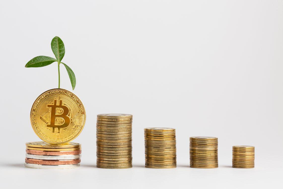Perché Bitcoin sta crescendo: le ragioni fondamentali
