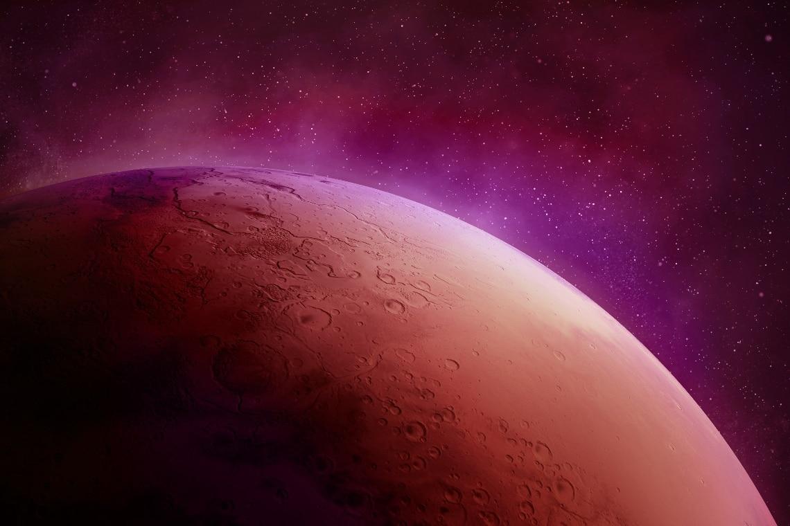 Elon Musk, Marte e la Marscoin