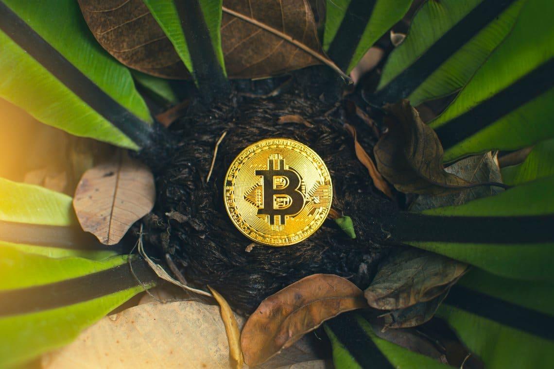 Smontato il mito del consumo di energia di Bitcoin