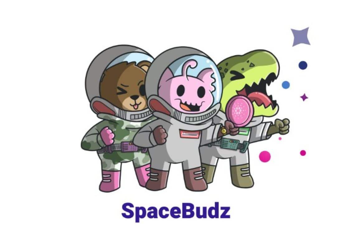SpaceBudz NFT Cardano