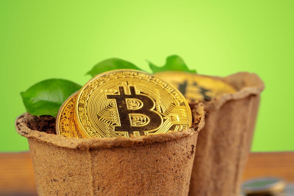 Square investe 5 milioni nel mining insieme a Blockstream