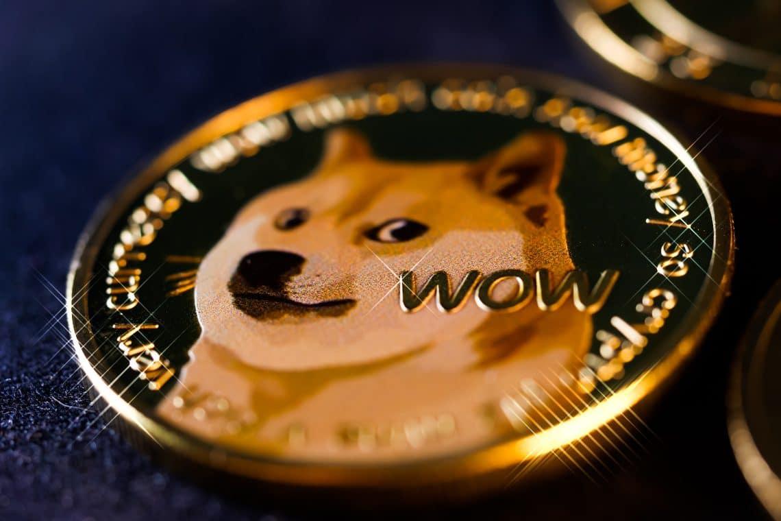 piano di investimento dogecoin come mantenere organizzato il mio trading di criptovaluta